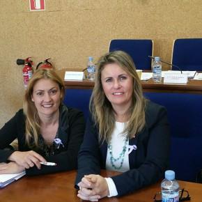 """Fernández: """"Cs lamenta el veto de Compromís a las declaraciones institucionales contra el acoso escolar y violencia de género en Benicàssim"""""""
