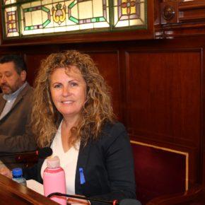 Cs en la Diputación pide agilizar el Plan Provincial antimosquitos