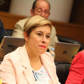 Cs urge al Consell a tomar medidas para combatir los mosquitos en la provincia de Castellón